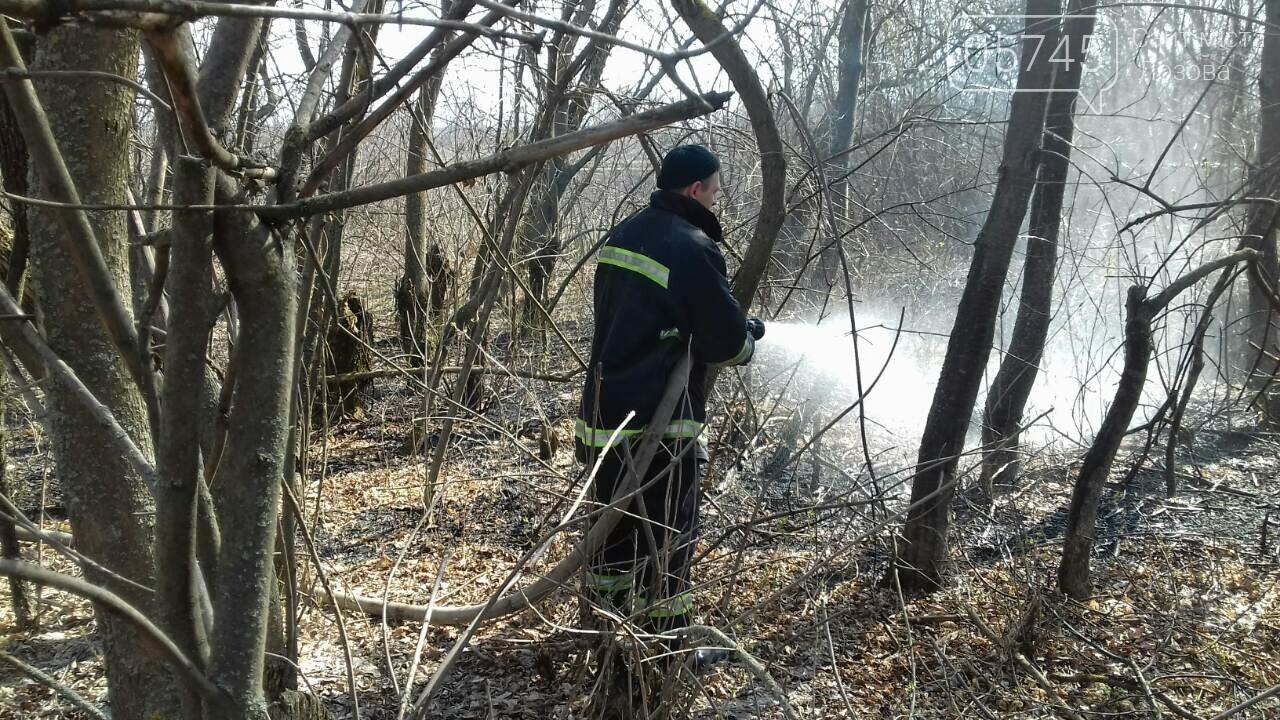 В Лозовой горело 700 кв. м. сухой травы, фото-2