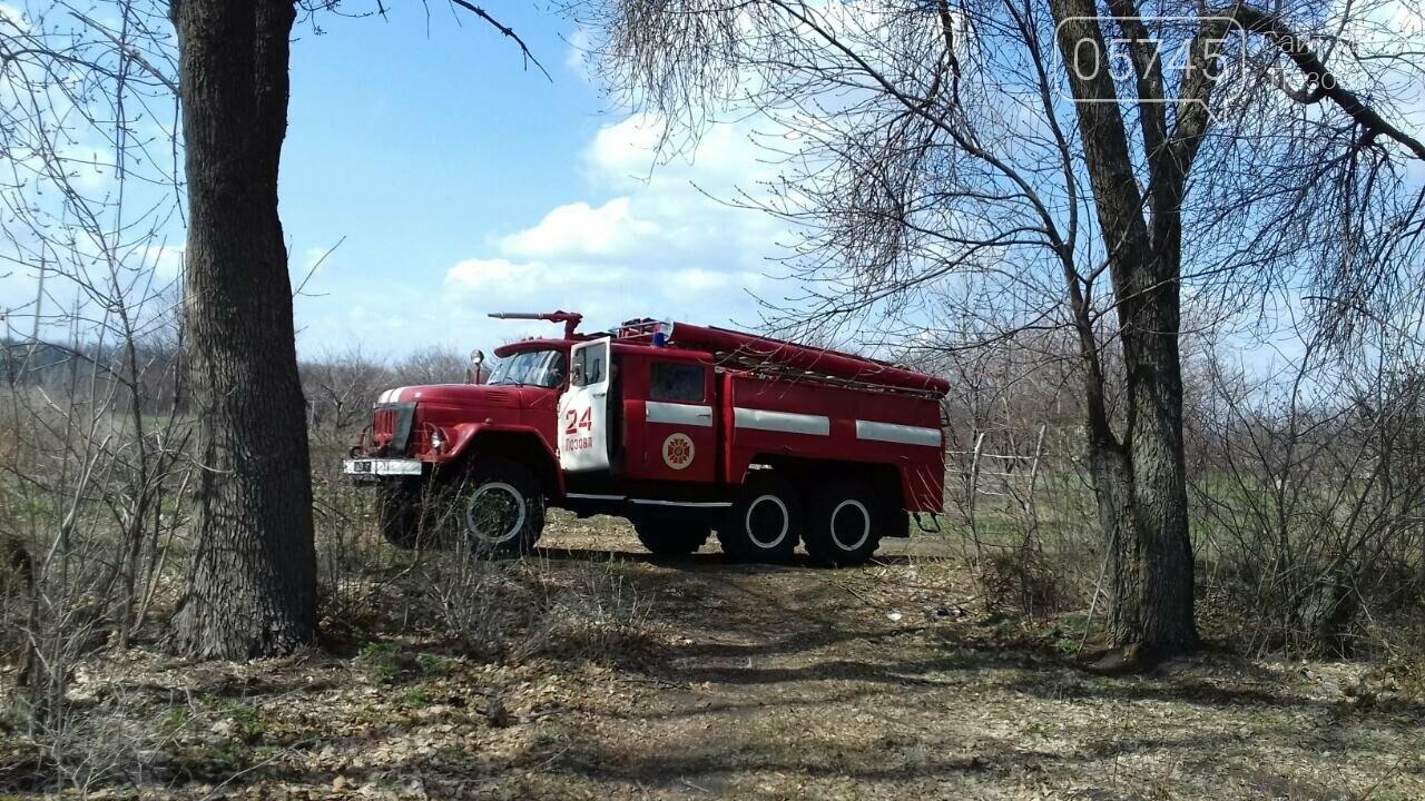 В Лозовой горело 700 кв. м. сухой травы, фото-3
