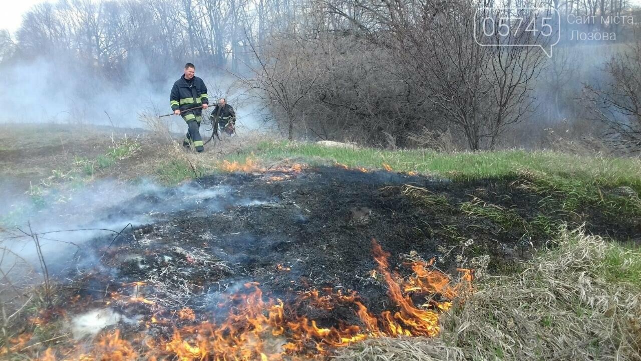 В Лозовой горело 700 кв. м. сухой травы, фото-1