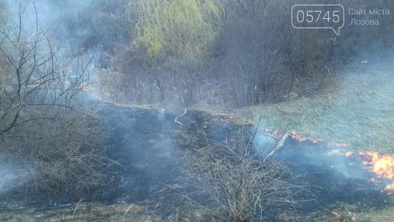 В Лозовой горело 700 кв. м. сухой травы, фото-4