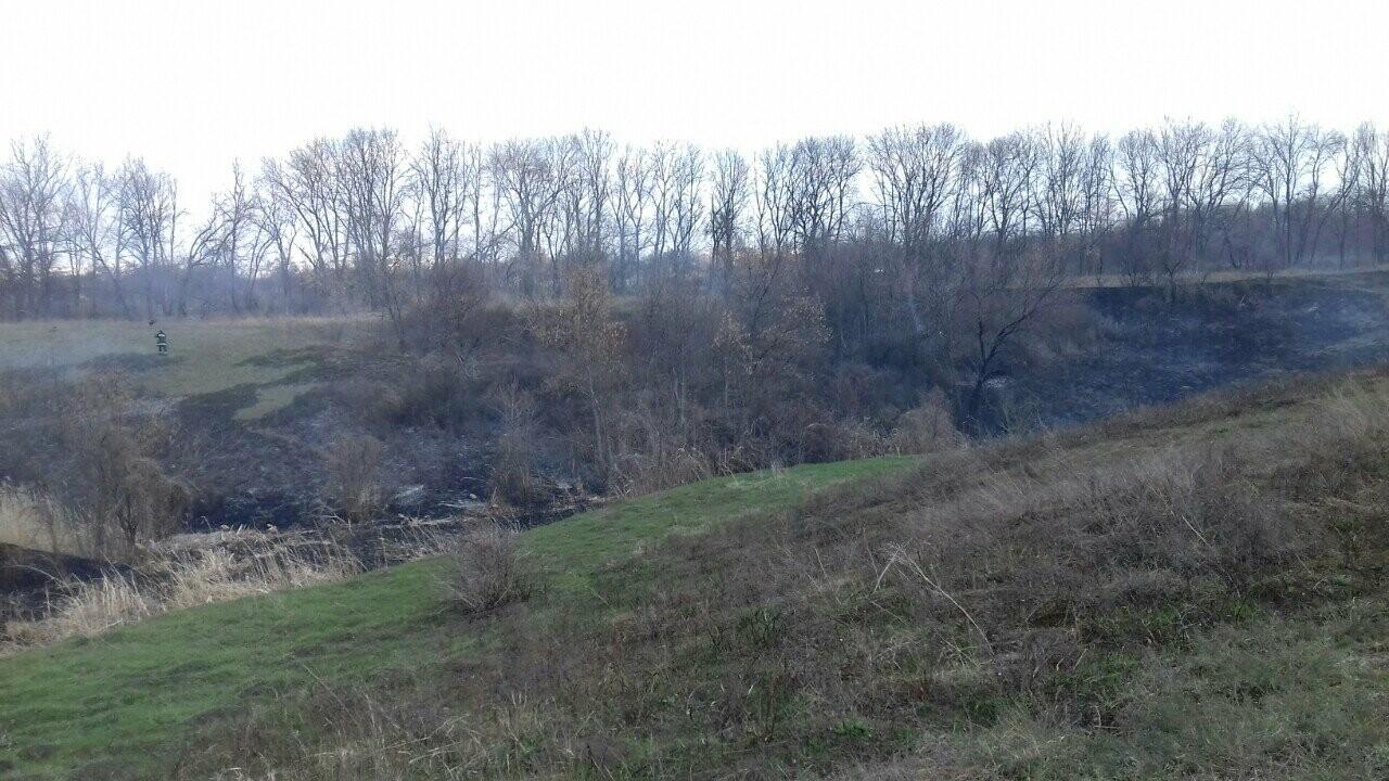 В Лозовой горело 700 кв. м. сухой травы, фото-5