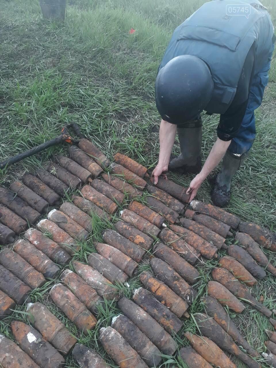В Лозовском районе обнаружили боеприпасы времен Второй мировой войны, фото-1