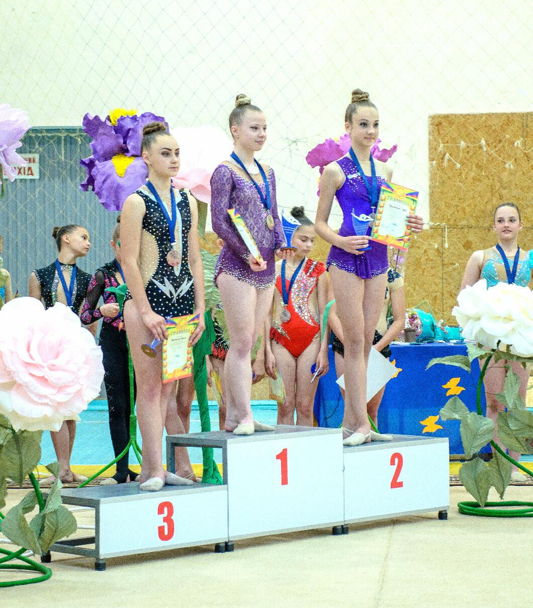В Лозовой состоялся открытый Кубок Федерации города по художественной гимнастике, фото-2