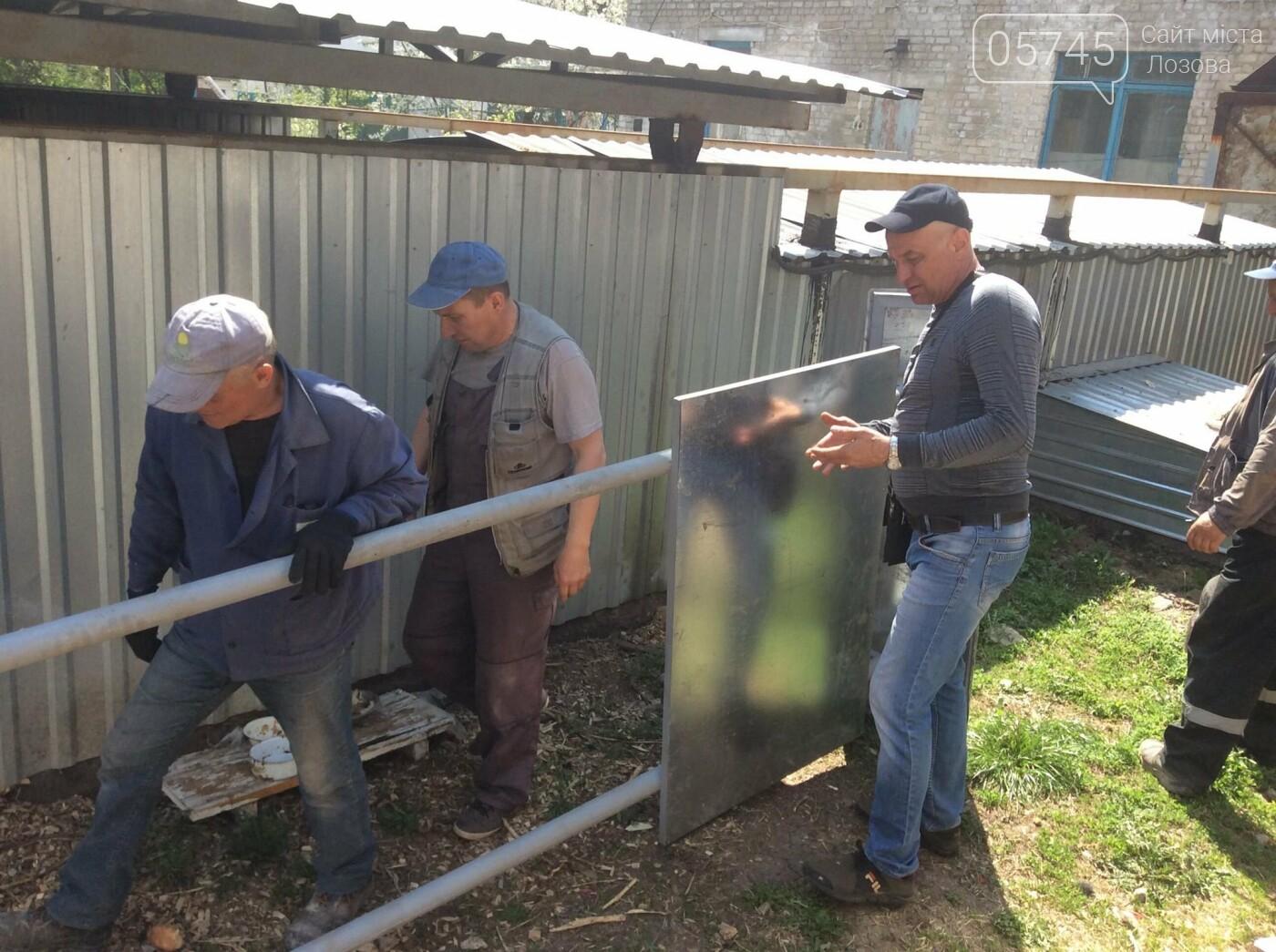 """Зоозащитная организация Лозовой """"Маємо право-2"""" ищет новый дом для питомцев, фото-4"""