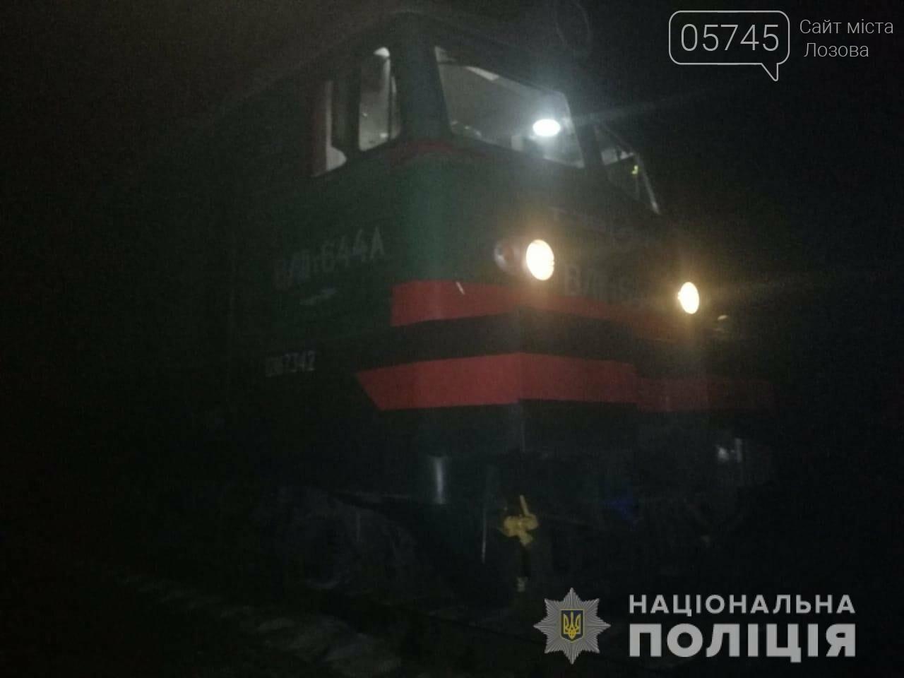 В Панютино товарный поезд насмерть сбил мужчину, фото-1