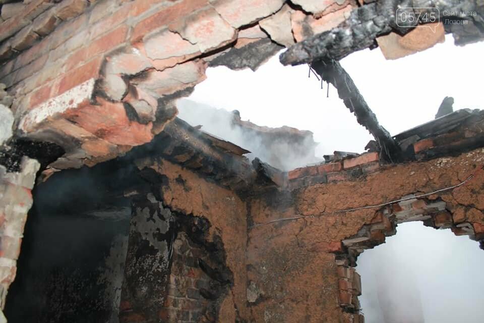 В селе Бунаково на Лозовщине в пожаре погибла бабушка, фото-4