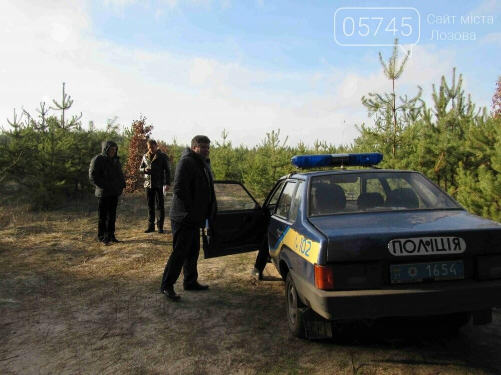 В лесу, неподалеку от Лозовой, зафиксировали нелегальную вырубку молодых елей (фото), фото-4