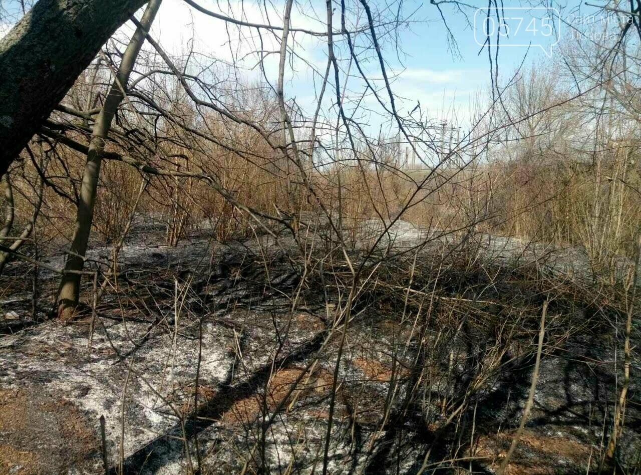 Горели камыш и трава: на выходных на Лозовщине случилось 9 пожаров, фото-6