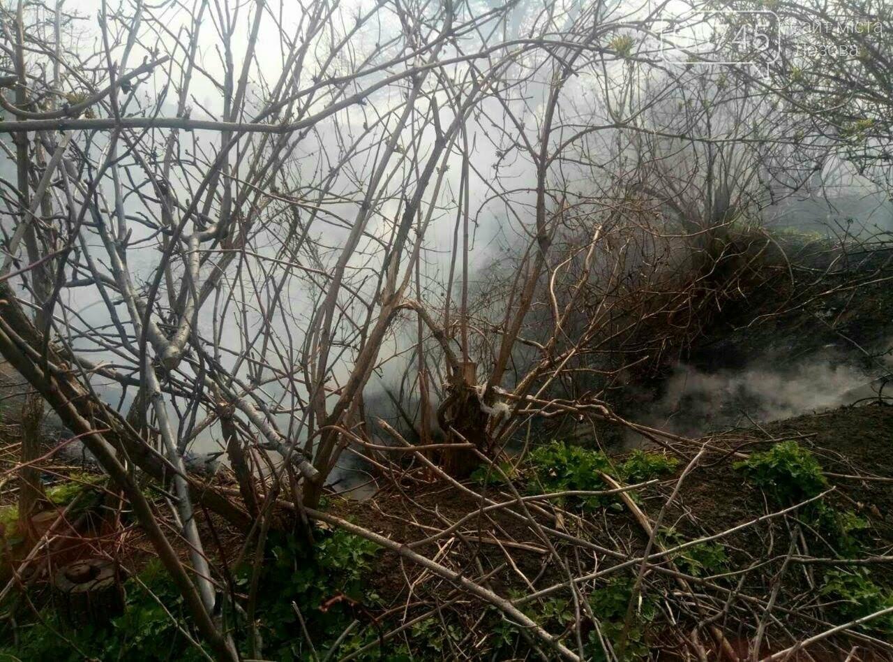 Горели камыш и трава: на выходных на Лозовщине случилось 9 пожаров, фото-5