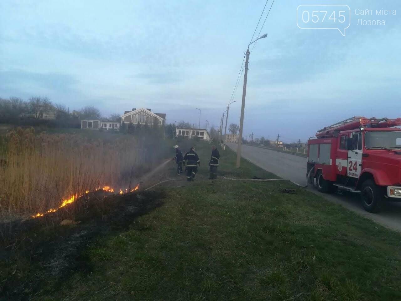 Горели камыш и трава: на выходных на Лозовщине случилось 9 пожаров, фото-10