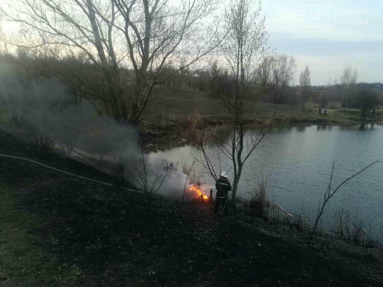 Горели камыш и трава: на выходных на Лозовщине случилось 9 пожаров, фото-11