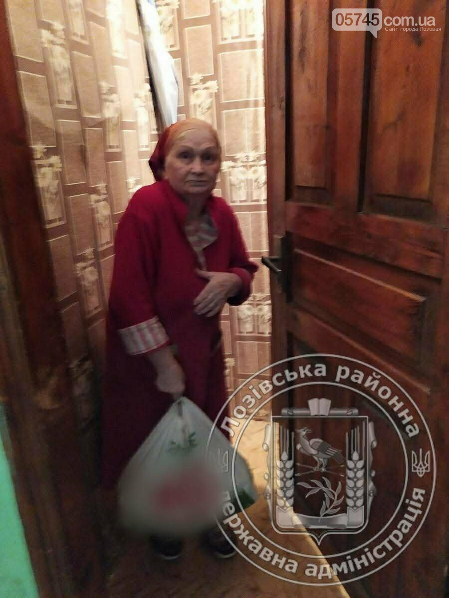 Помощь во время карантина: пожилым жителям Лозовского района раздали продукты, фото-5