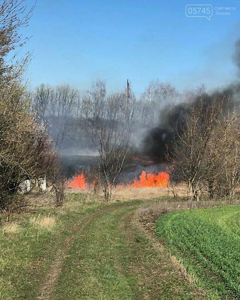 Лозовщина в огне: за неделю выгорело почти 11 гектаров сухостоя, фото-4