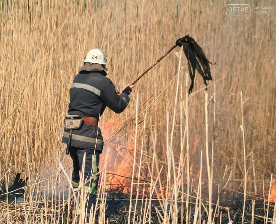Лозовщина в огне: за неделю выгорело почти 11 гектаров сухостоя, фото-1