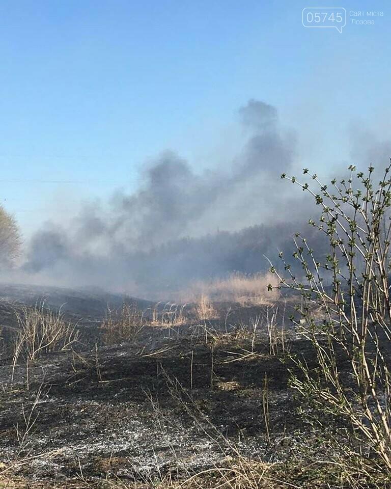 Лозовщина в огне: за неделю выгорело почти 11 гектаров сухостоя, фото-2
