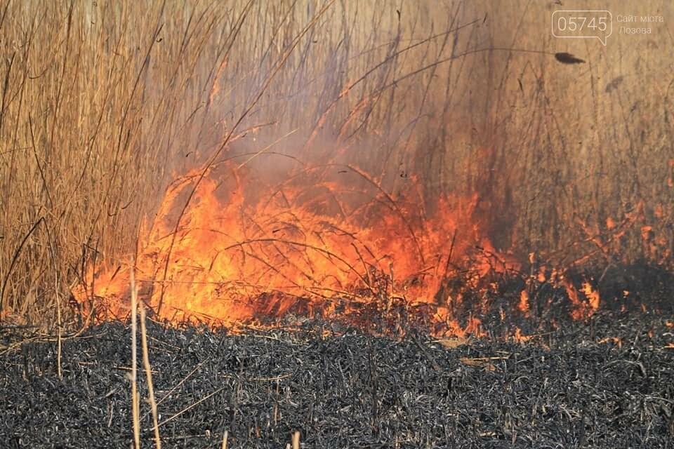 Лозовщина в огне: за неделю выгорело почти 11 гектаров сухостоя, фото-5