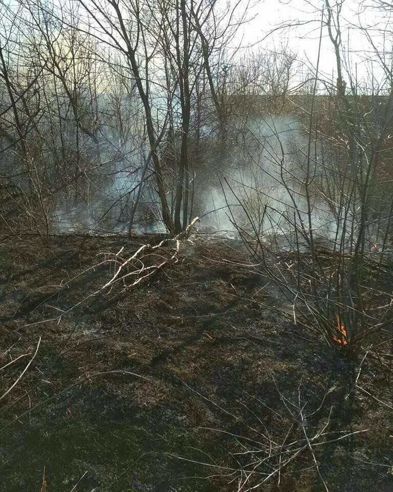 Лозовщина в огне: за неделю выгорело почти 11 гектаров сухостоя, фото-6