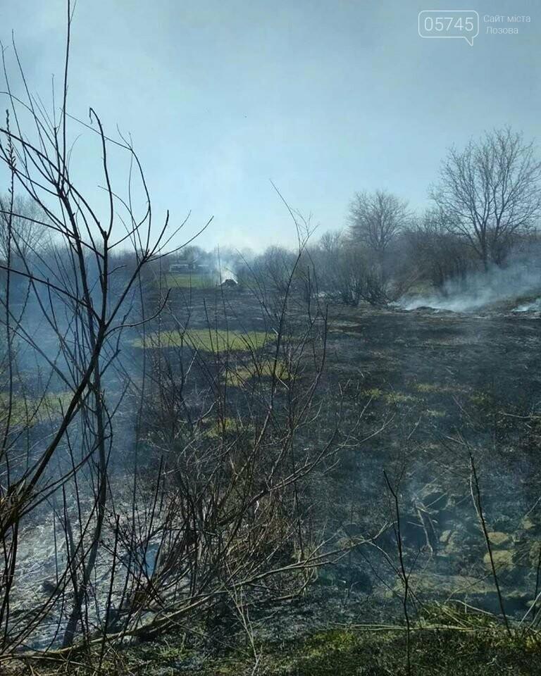 Лозовщина в огне: за неделю выгорело почти 11 гектаров сухостоя, фото-9