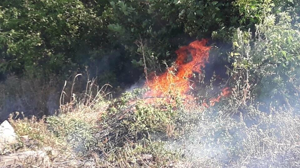 Огонь перекинулся с сухостоя на сарай: лозовские спасатели тушат пожар в центре города , фото-3