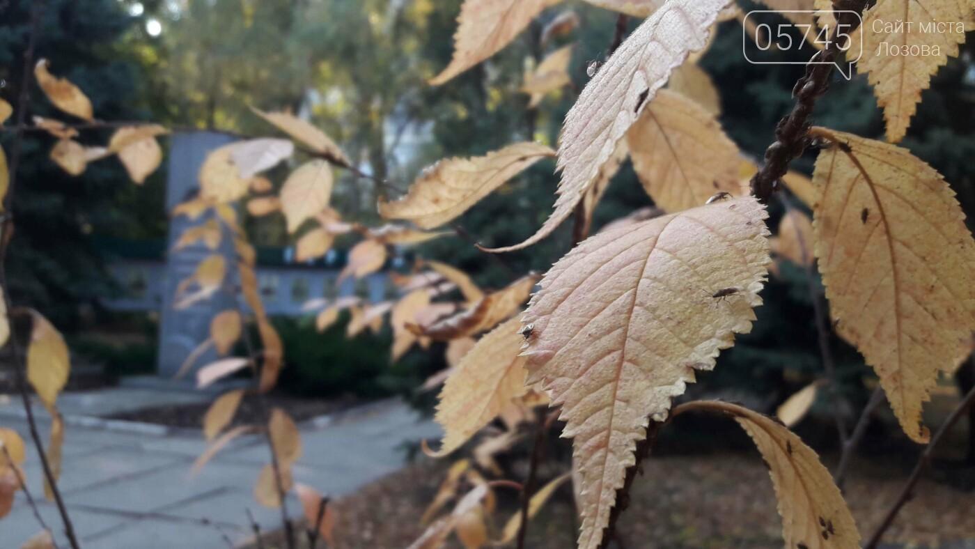 Осенние краски Лозовой (ФОТО), фото-10