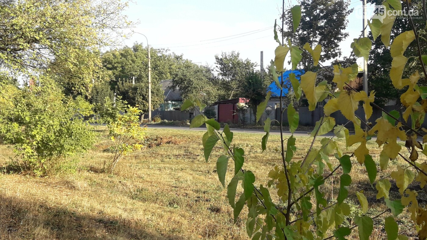 Осенние краски Лозовой (ФОТО), фото-20