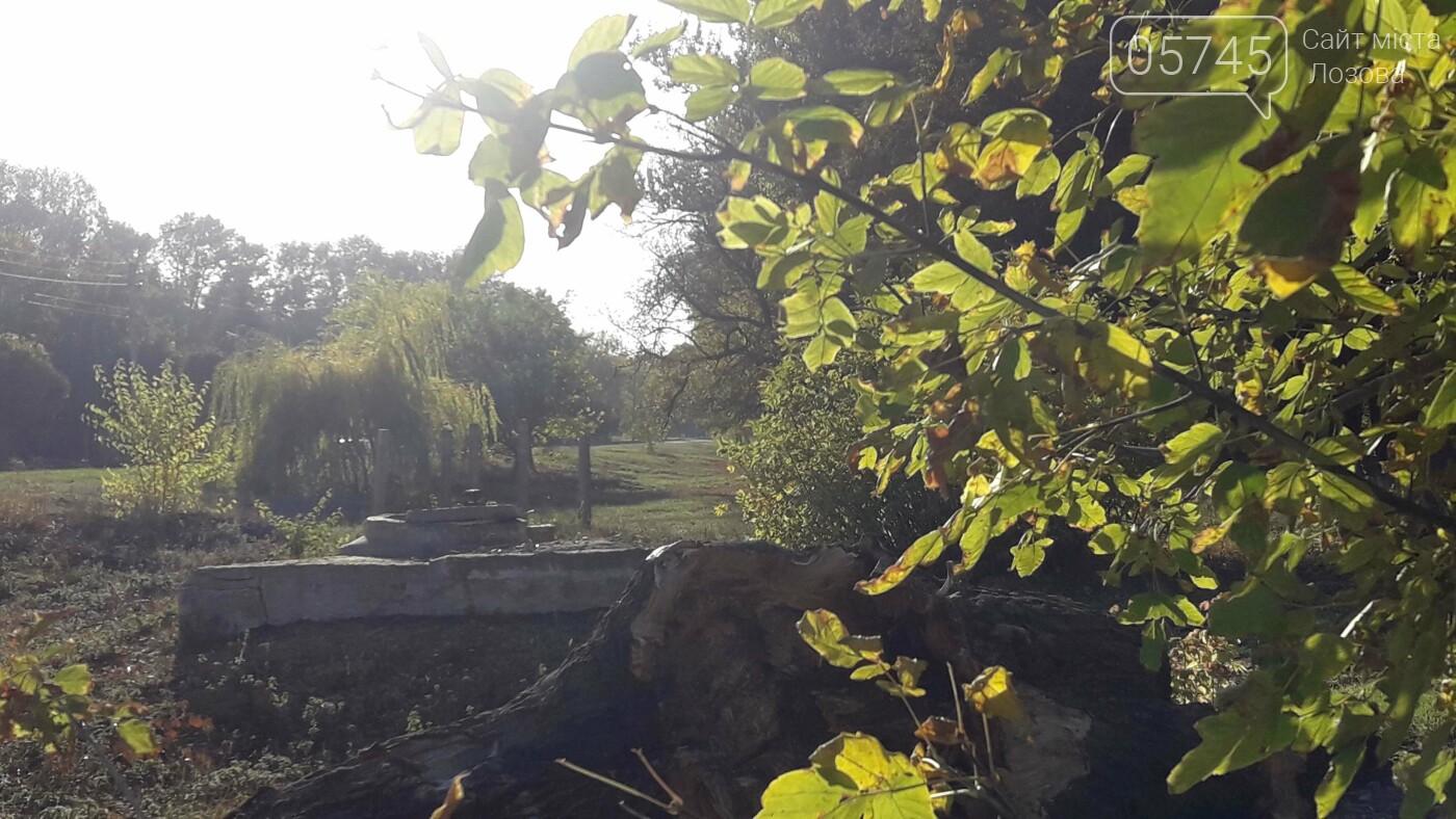 Осенние краски Лозовой (ФОТО), фото-21