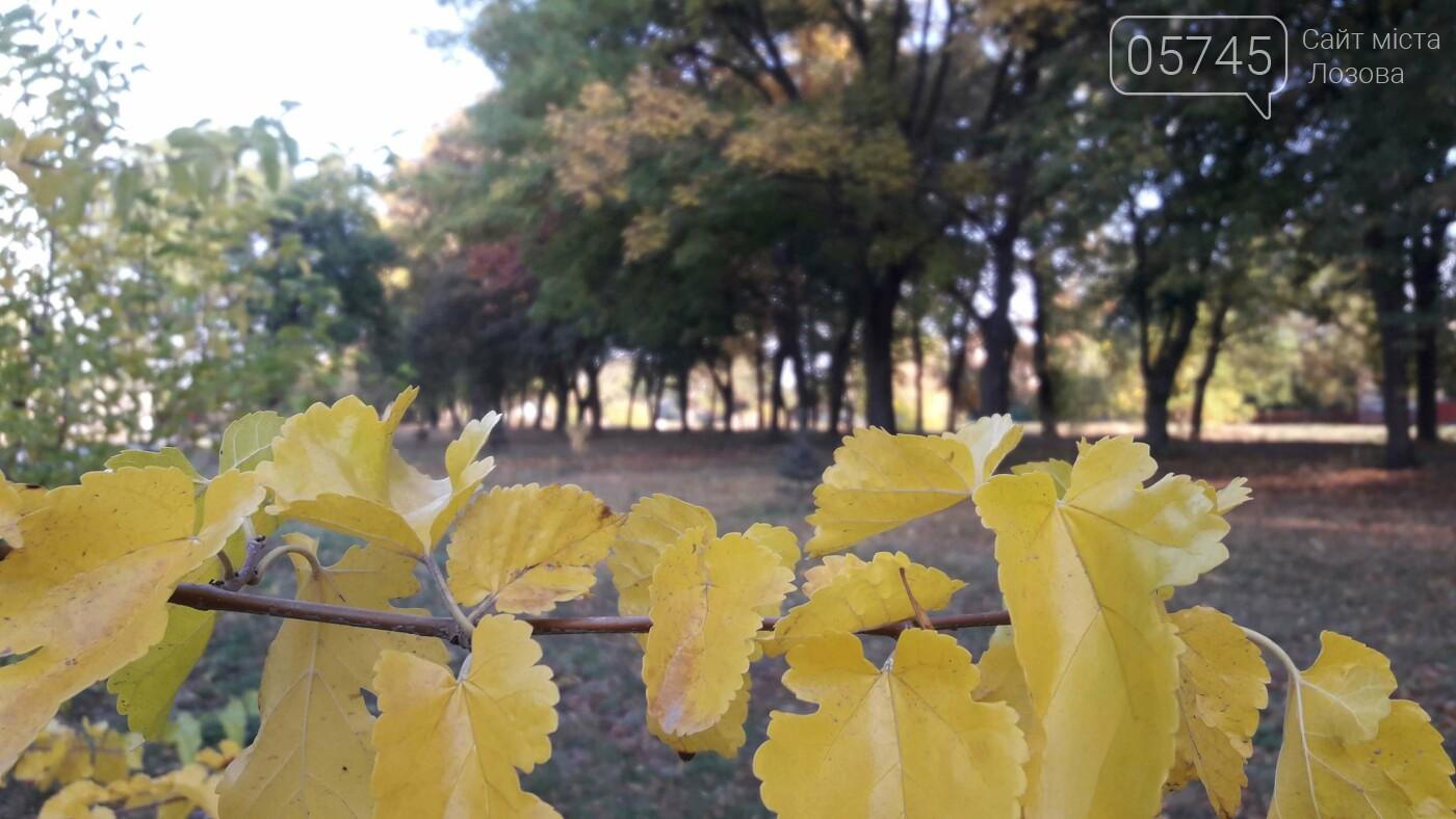 Осенние краски Лозовой (ФОТО), фото-16