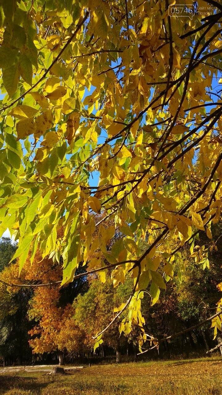 Осенние краски Лозовой (ФОТО), фото-29