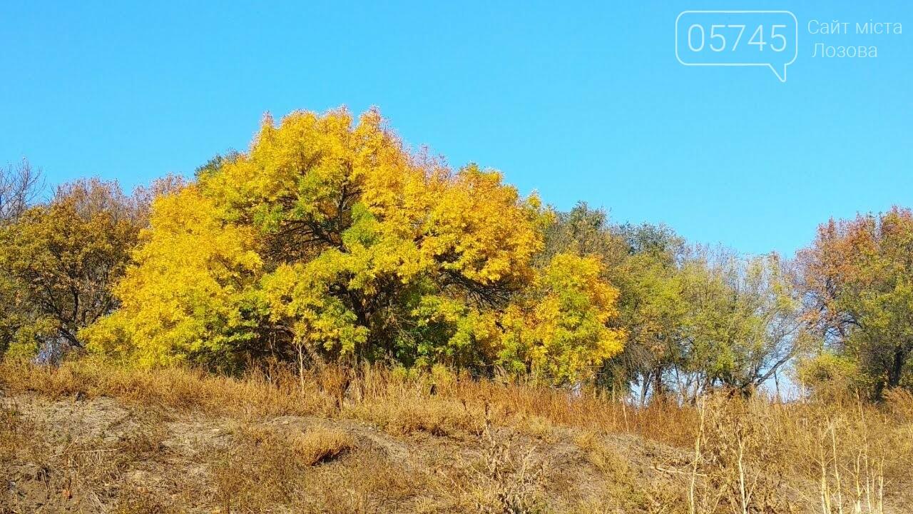Осенние краски Лозовой (ФОТО), фото-25