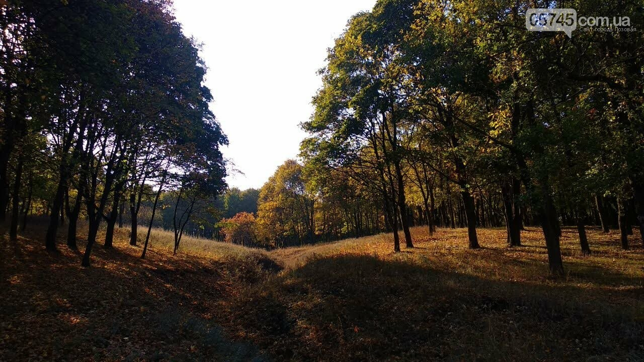 Осенние краски Лозовой (ФОТО), фото-28