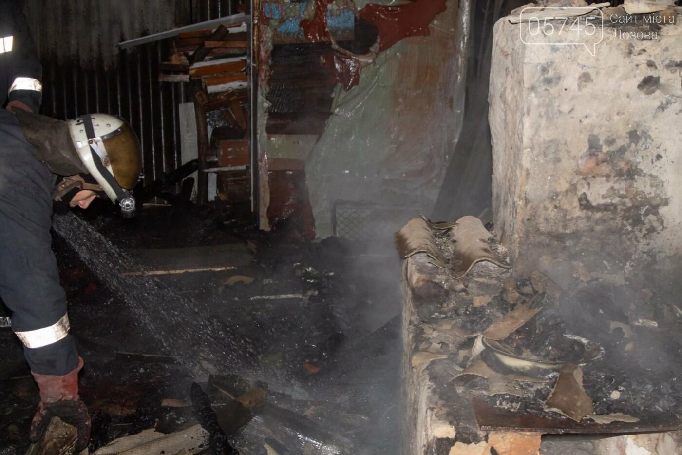 На Лозовщине, в Орельке, из-за пожара, погиб человек (ОБНОВЛЕНО), фото-3