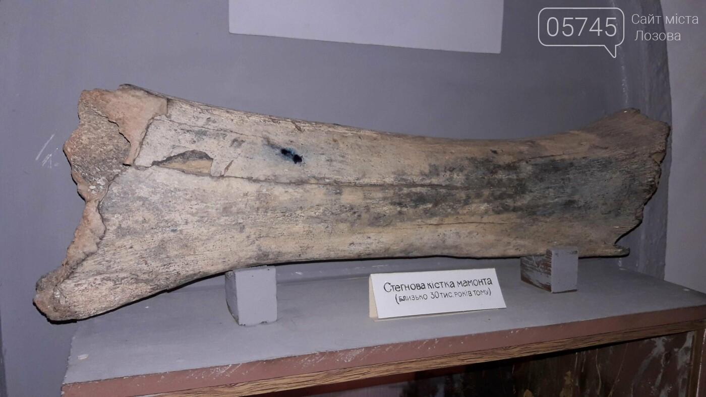 Кістка мамонта та найдоступніші екскурсії: ТОП 5 фактів про Лозівський краєзнавчий музей, фото-11
