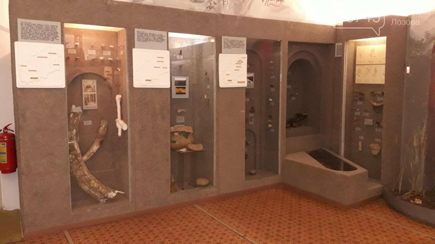 Кістка мамонта та найдоступніші екскурсії: ТОП 5 фактів про Лозівський краєзнавчий музей, фото-27
