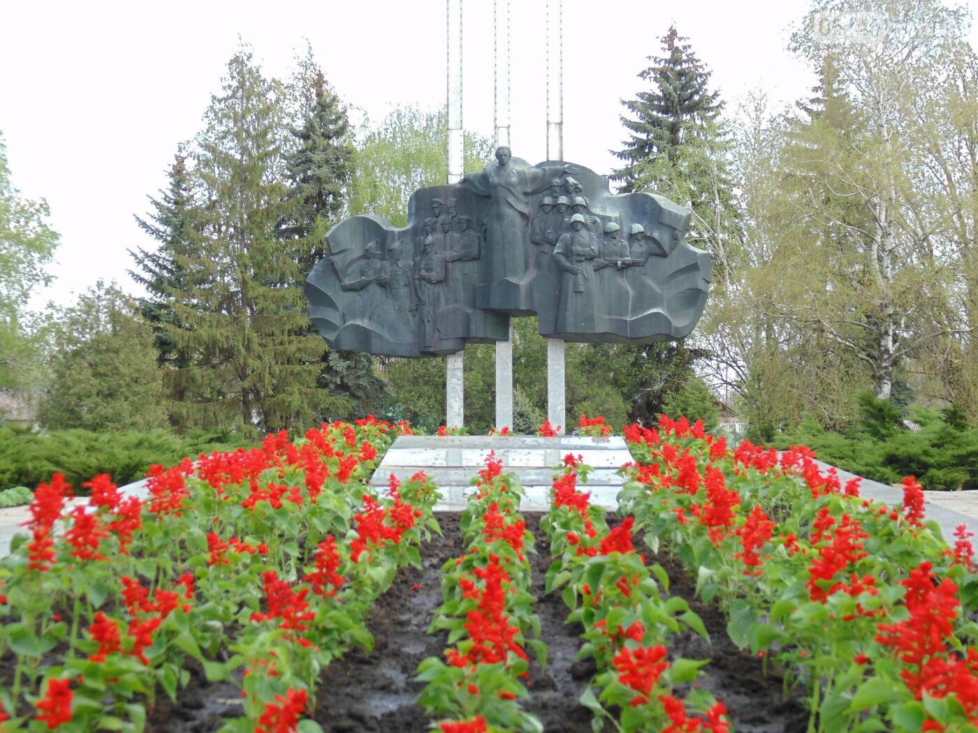 Петунії, тагетеси, сальвії: скільки коштів Лозівщина витратила на квіти для клумб, фото-1