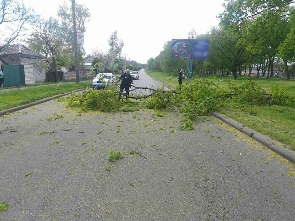 Сильний вітер у Лозовій: що сталося за вихідні, фото-1
