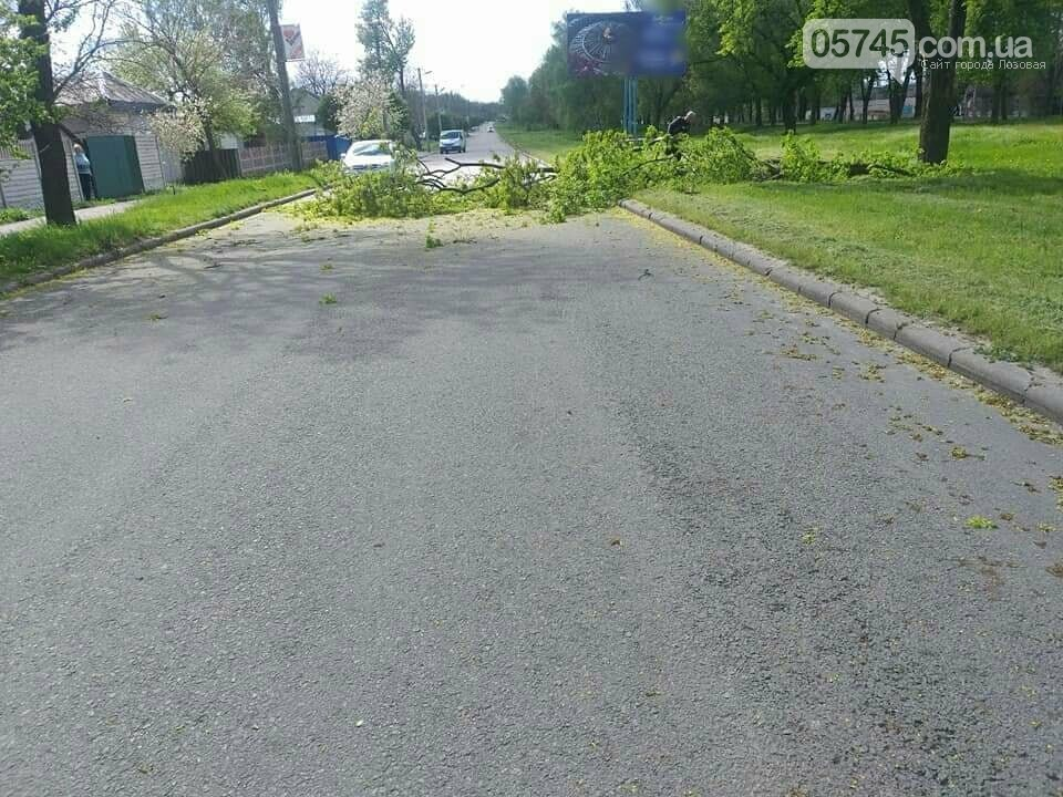 Сильний вітер у Лозовій: що сталося за вихідні, фото-3