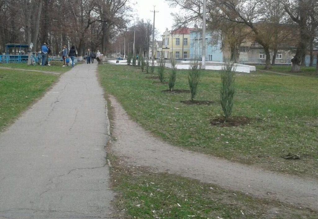 В старостинских округах Лозовской ОТГ высаживают деревья, фото-2