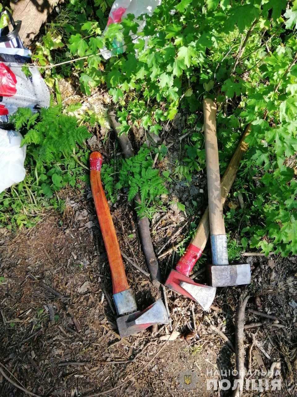 В Лозовой нашли человека, который незаконно вырубал деревья , фото-3
