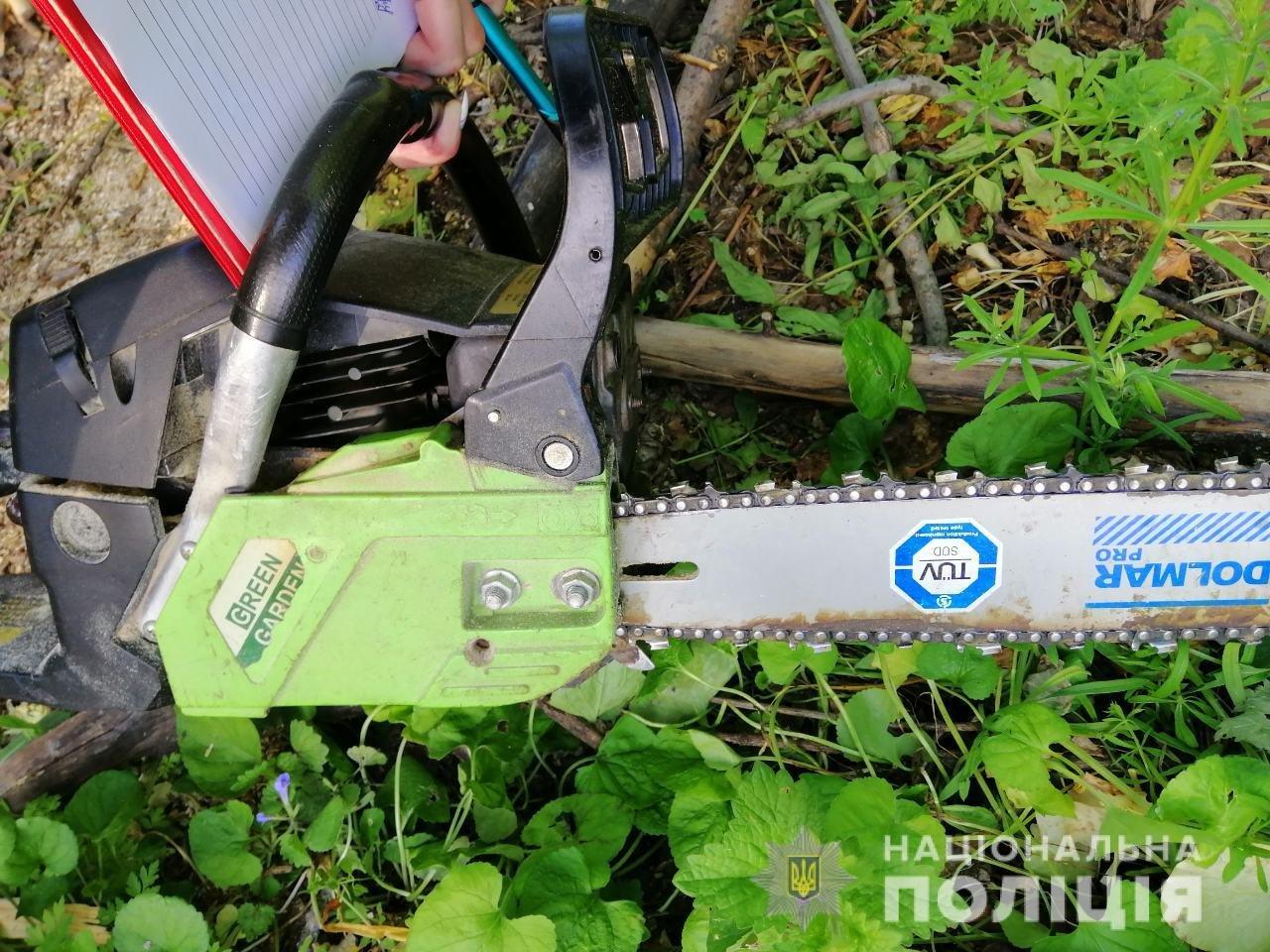 В Лозовой нашли человека, который незаконно вырубал деревья , фото-4