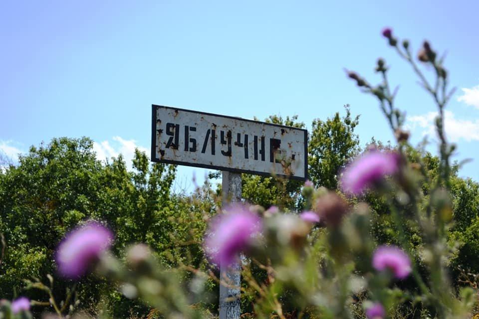 На Лозовщине ремонтируют дорогу Панютино - Старая Владимировка, фото-1