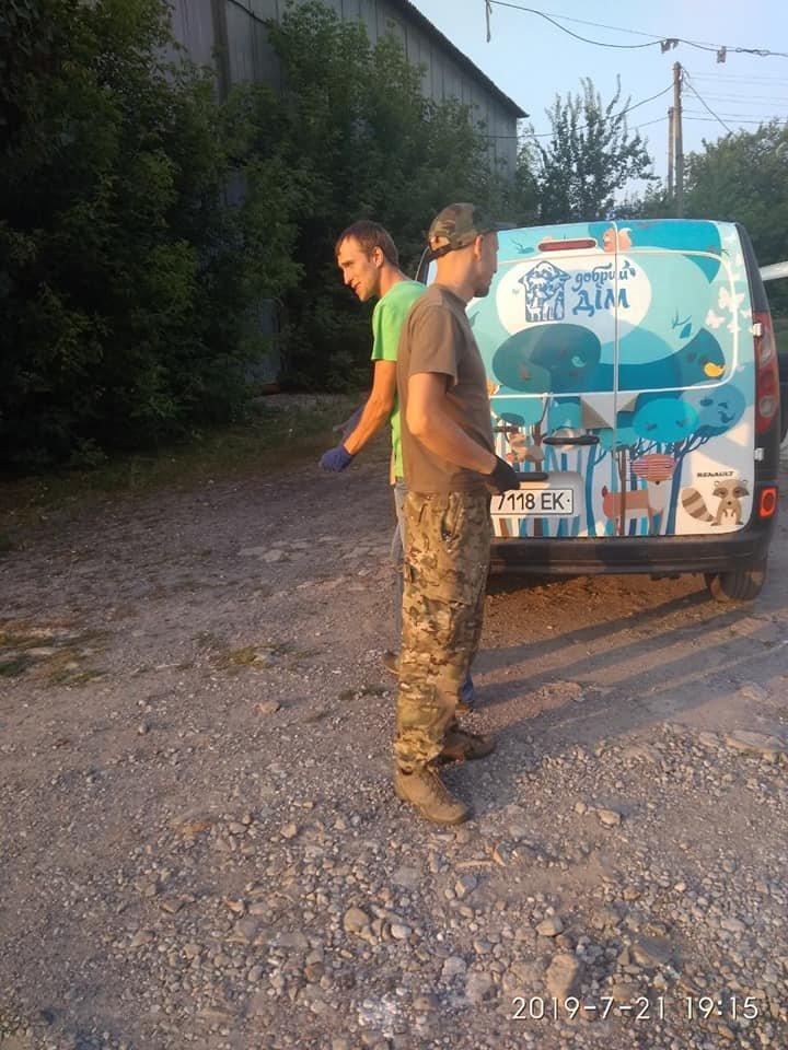 """В Лозовой зоозащитная организация """"Маємо право-2"""" провела массовую стерилизацию бездомных животных, фото-9"""