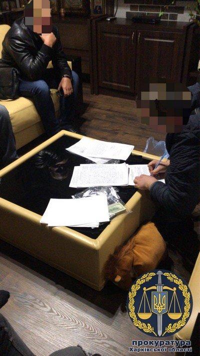 Экс-заместителя главы  ХОГА подозревают в служебном преступлении , фото-3