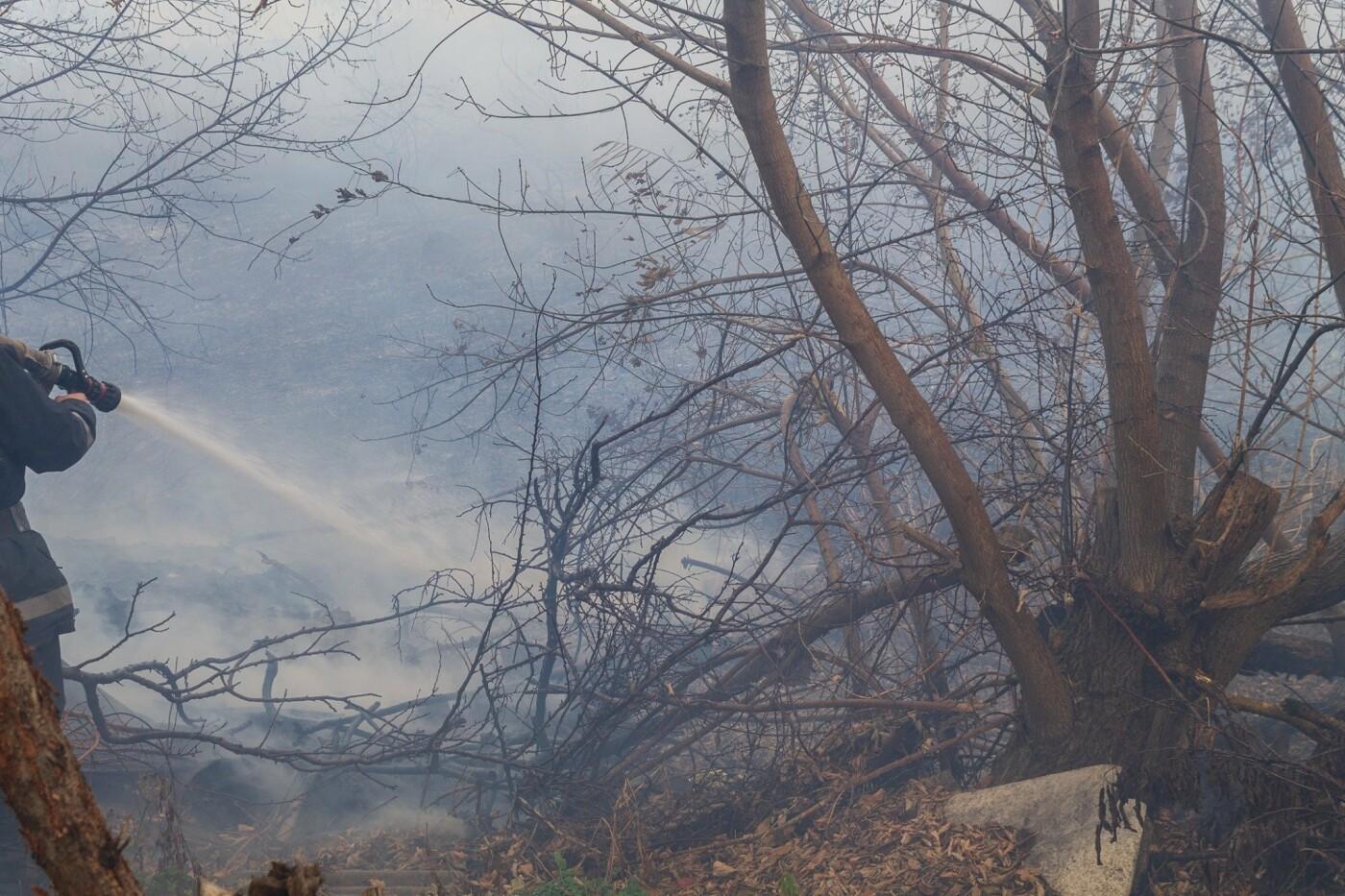 В Лозовой и селе Весёлом выгорела сухая растительность, фото-7