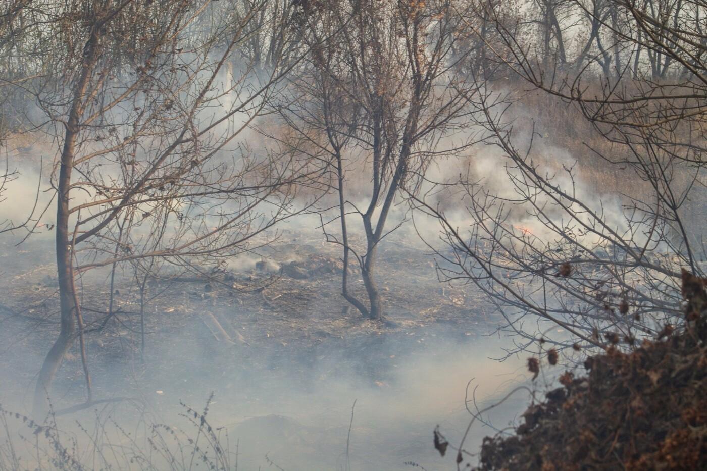 В Лозовой и селе Весёлом выгорела сухая растительность, фото-8