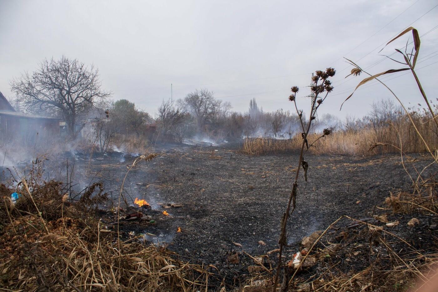 В Лозовой и селе Весёлом выгорела сухая растительность, фото-11