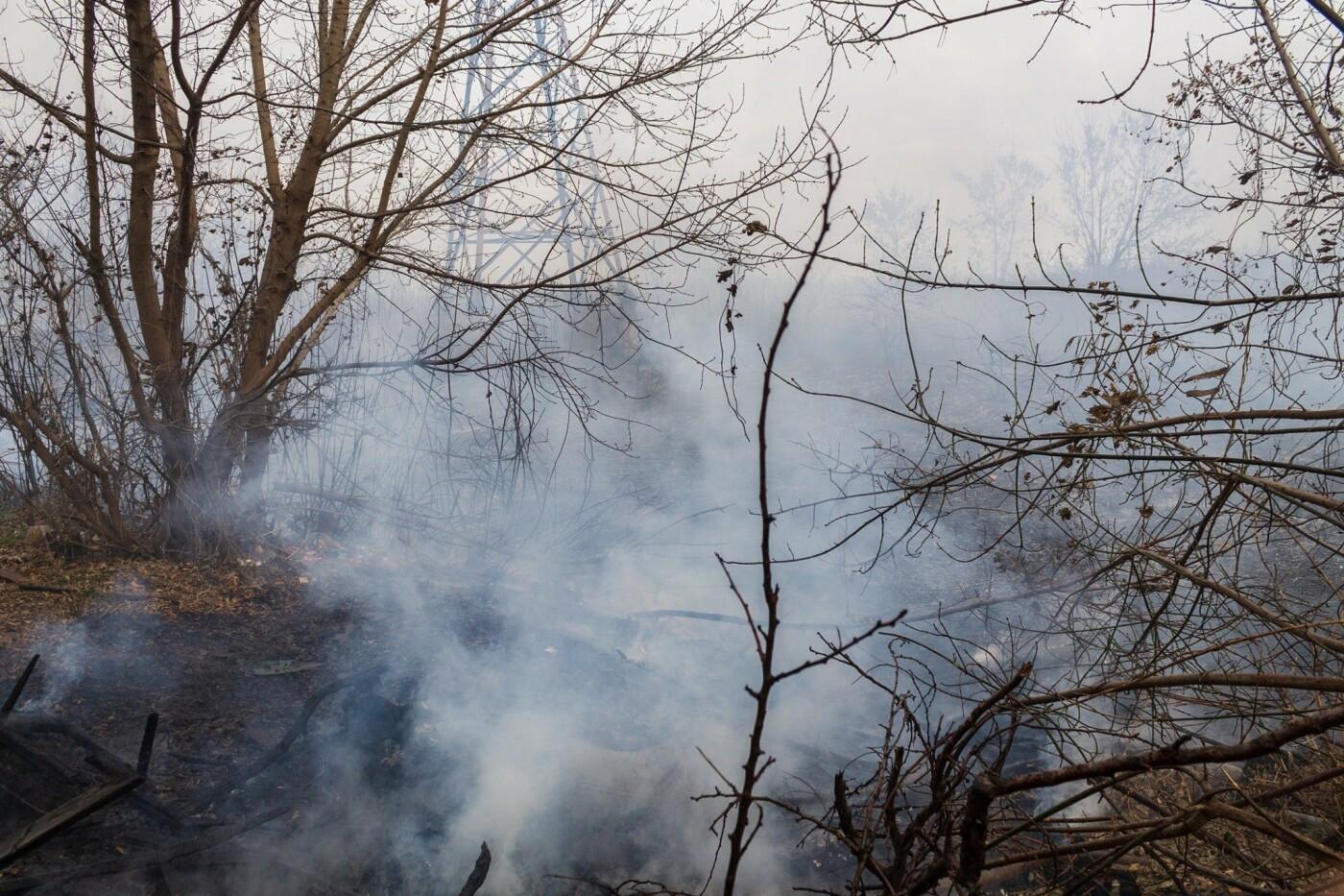 В Лозовой и селе Весёлом выгорела сухая растительность, фото-9