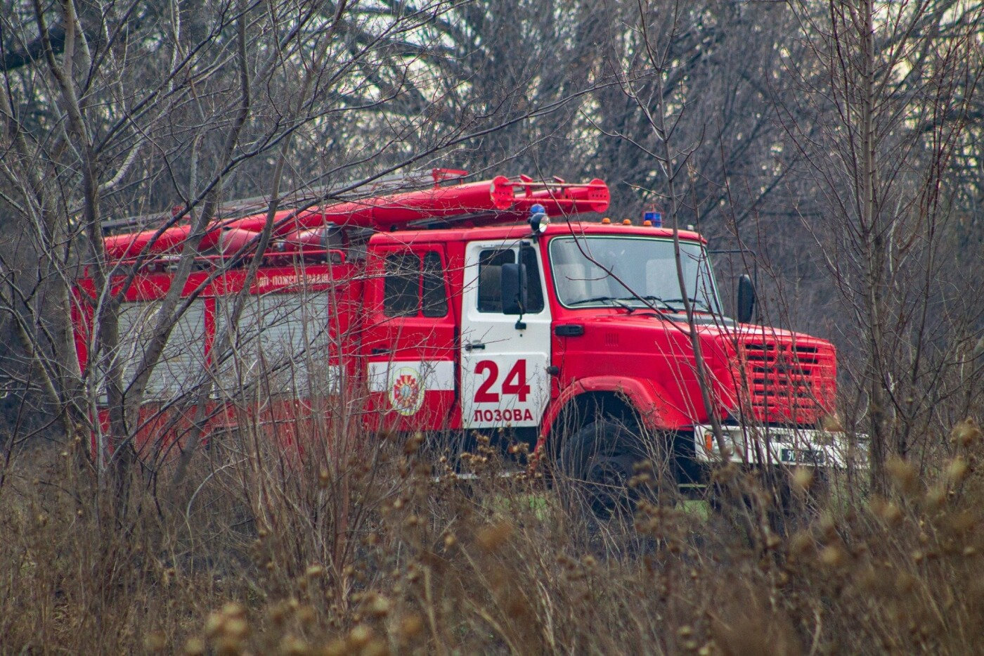В Лозовой и селе Весёлом выгорела сухая растительность, фото-1