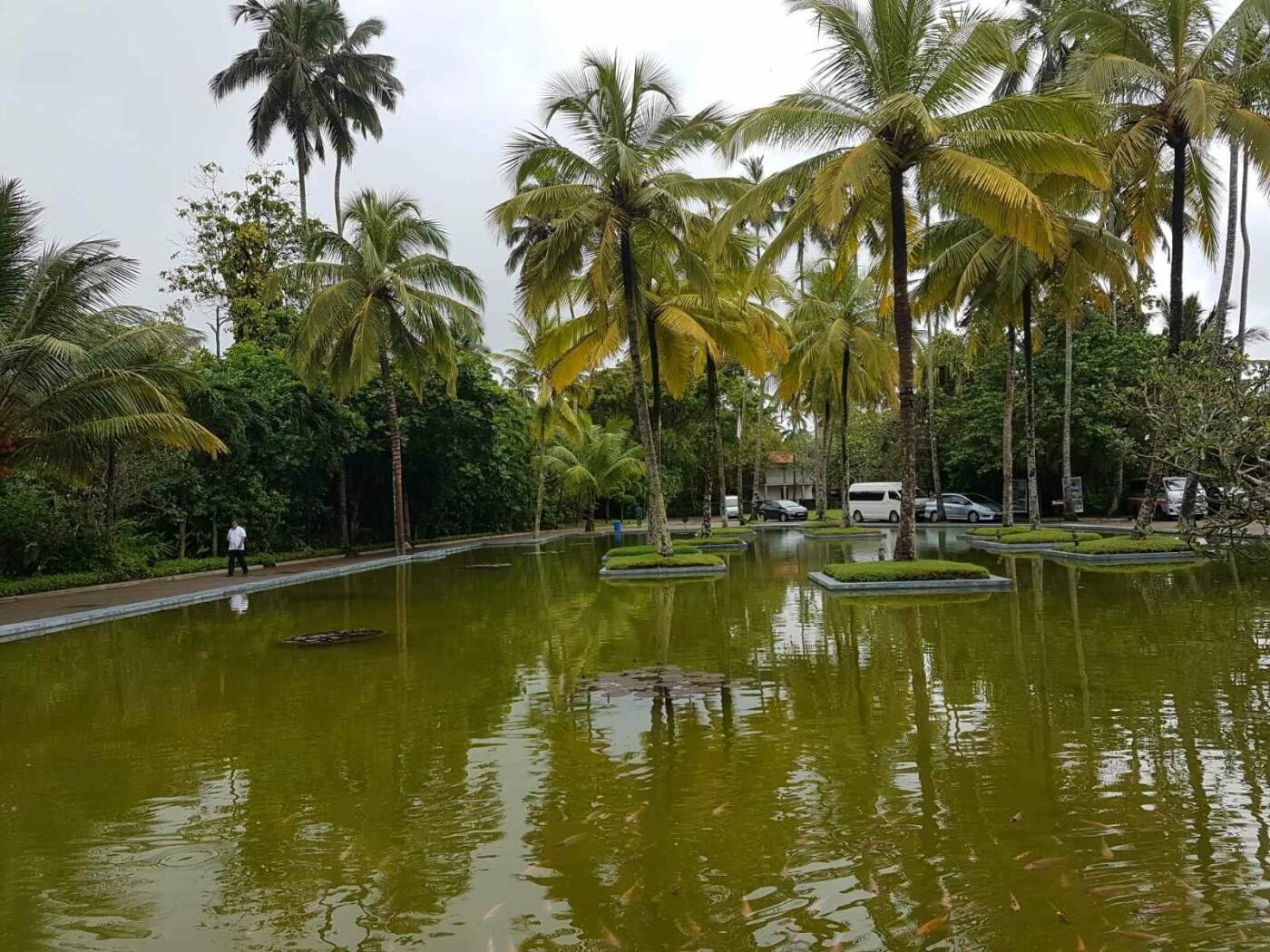Турагентство «Vиктория» приглашает лозовчан отдохнуть в незабываемой Шри-Ланке и посетить Рождественскую сказку в Яремче, фото-3