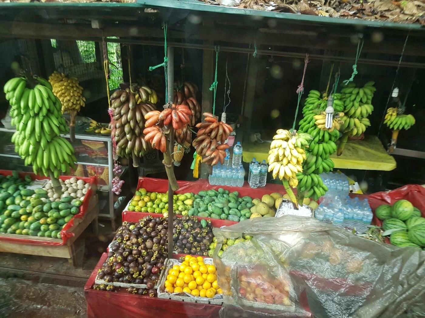 Турагентство «Vиктория» приглашает лозовчан отдохнуть в незабываемой Шри-Ланке и посетить Рождественскую сказку в Яремче, фото-19
