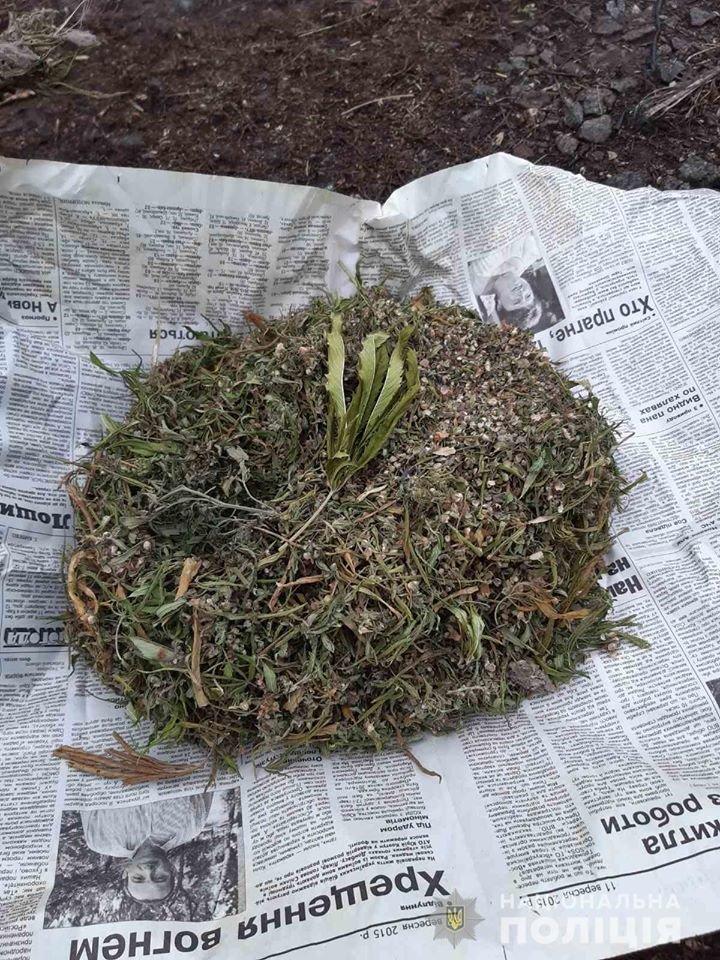У жителя Лозовщины изъяли около 3 килограммов конопли , фото-2